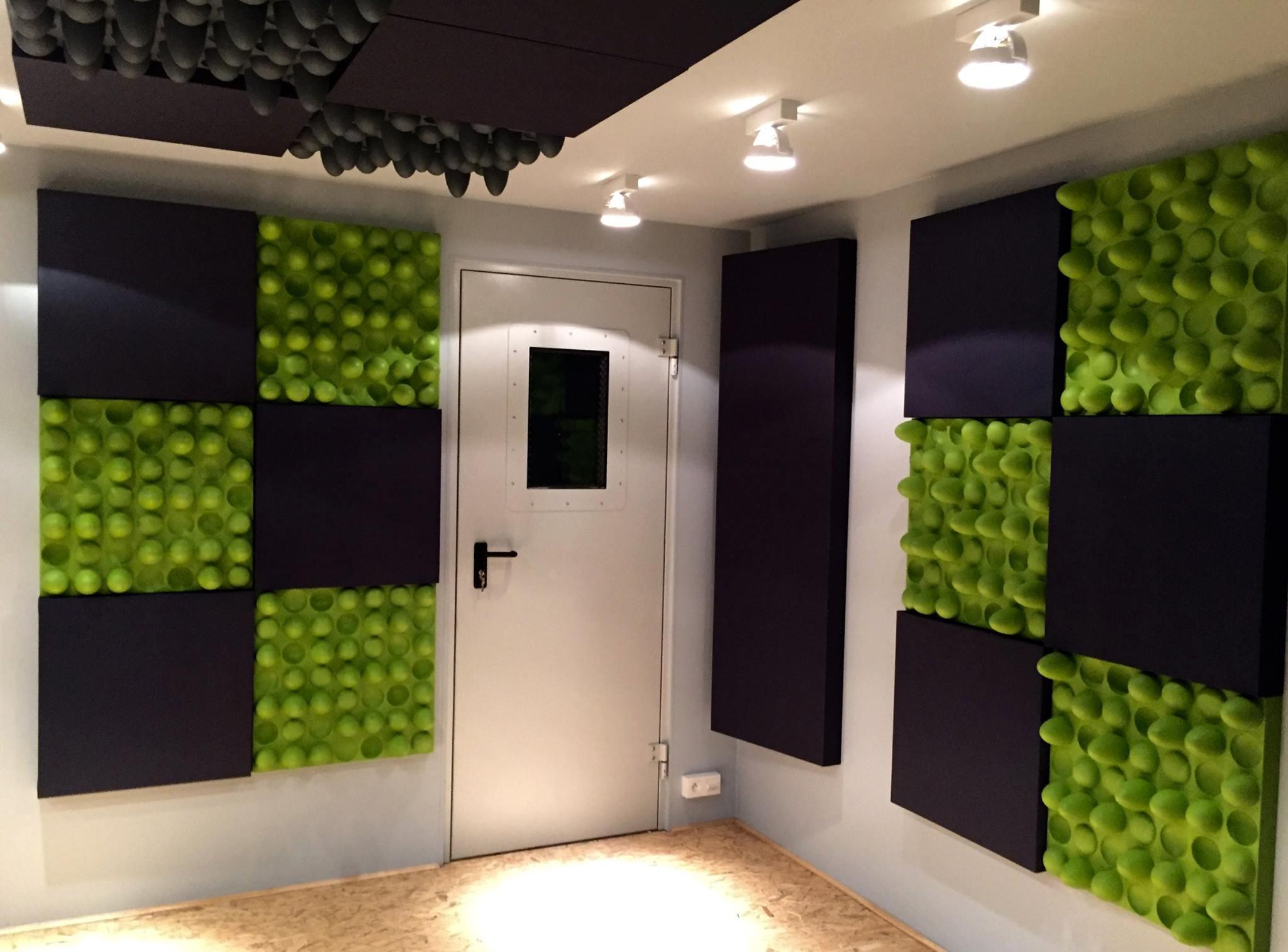 Acoustic Doors: ALPHAfon  AD   Architectural Acoustics U0026 Noise Control |  Alpha Acoustiki